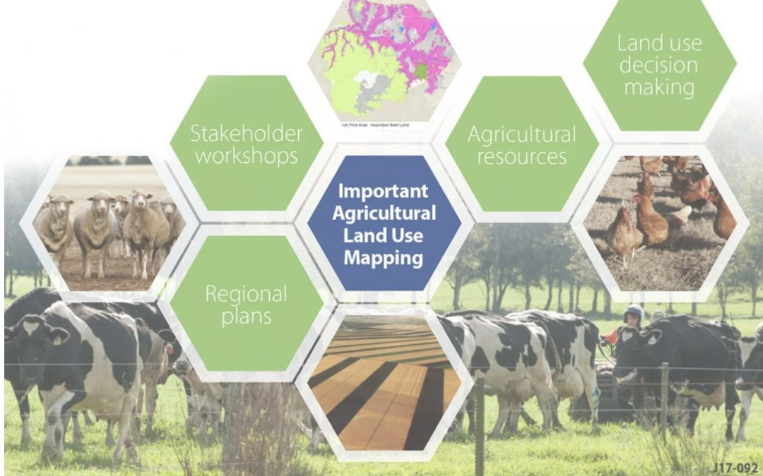NSW Department of Primary Industries mapping important agricultural land