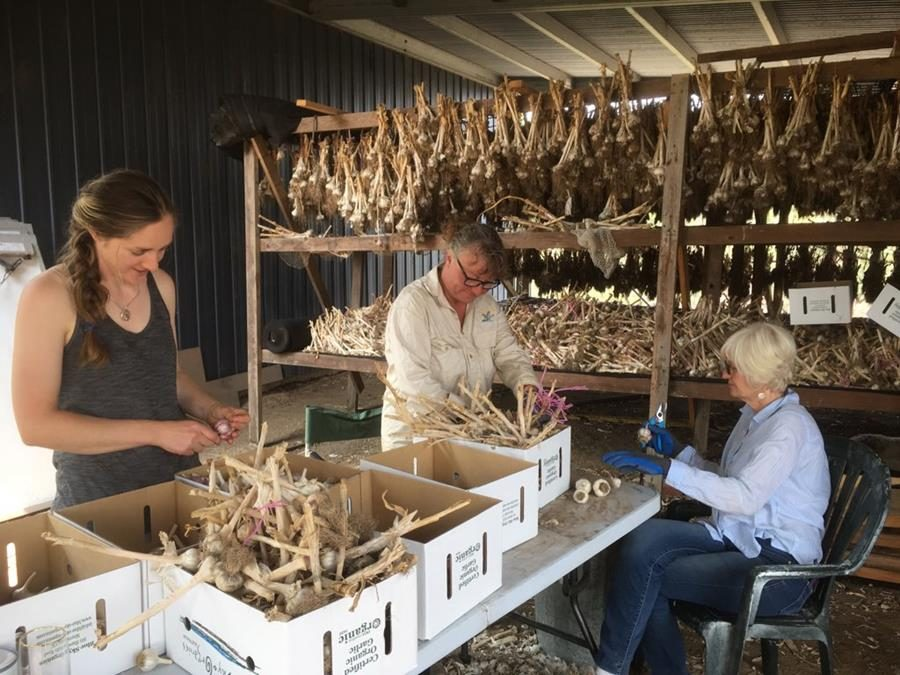 Open Hearts and Hands for Bushfire Affected Farms